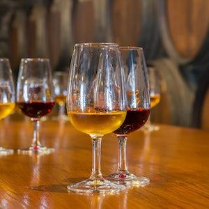 cata de vinos en oporto bodega