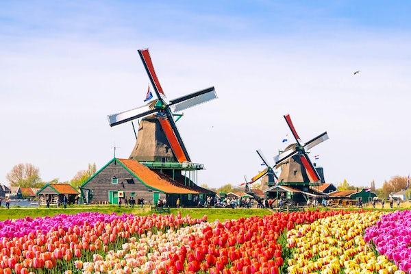Tour a Edam, Volendam, Marken y Zaanse Schans (Campiña Holandesa)