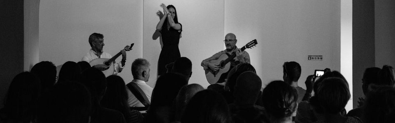 Concierto de Fado en Oporto (Casa da Guitarra - 1 hora)