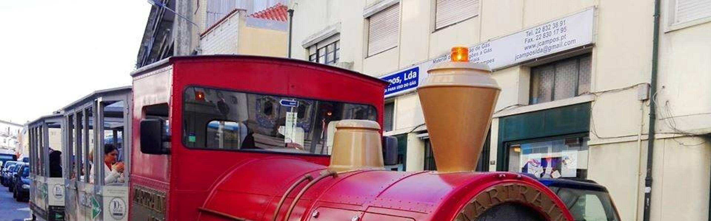 Tour en tren por Oporto, crucero por el río Douro y visita a bodega en Gaia