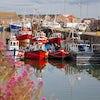 Puerto Y Barcos Pesqueros En Howth